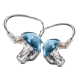In Ear Monitor (IEM)